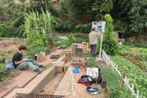 Municipal Sewage Reuse for Agricultural Irrigation
